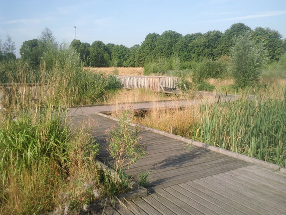 Sutcliffe Park, London: A common sense approach to health and safety near water (Ian Yarham 2010)