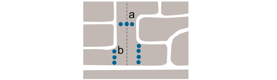 <p>a. Link between adjacent areas without</p><p> b. Multiple accesses preferable to channelling pedestrians and cycles through one vehicular access</p>